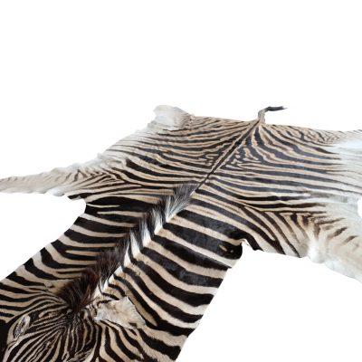 Te koop zebravel