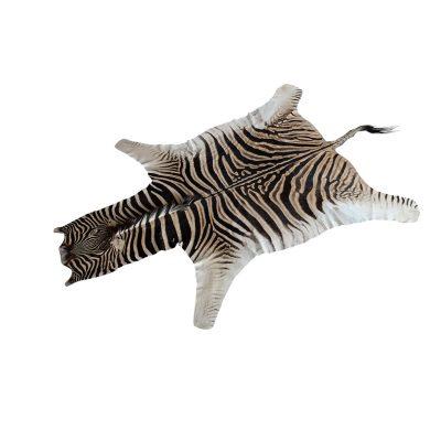 Zebrahuid te koop