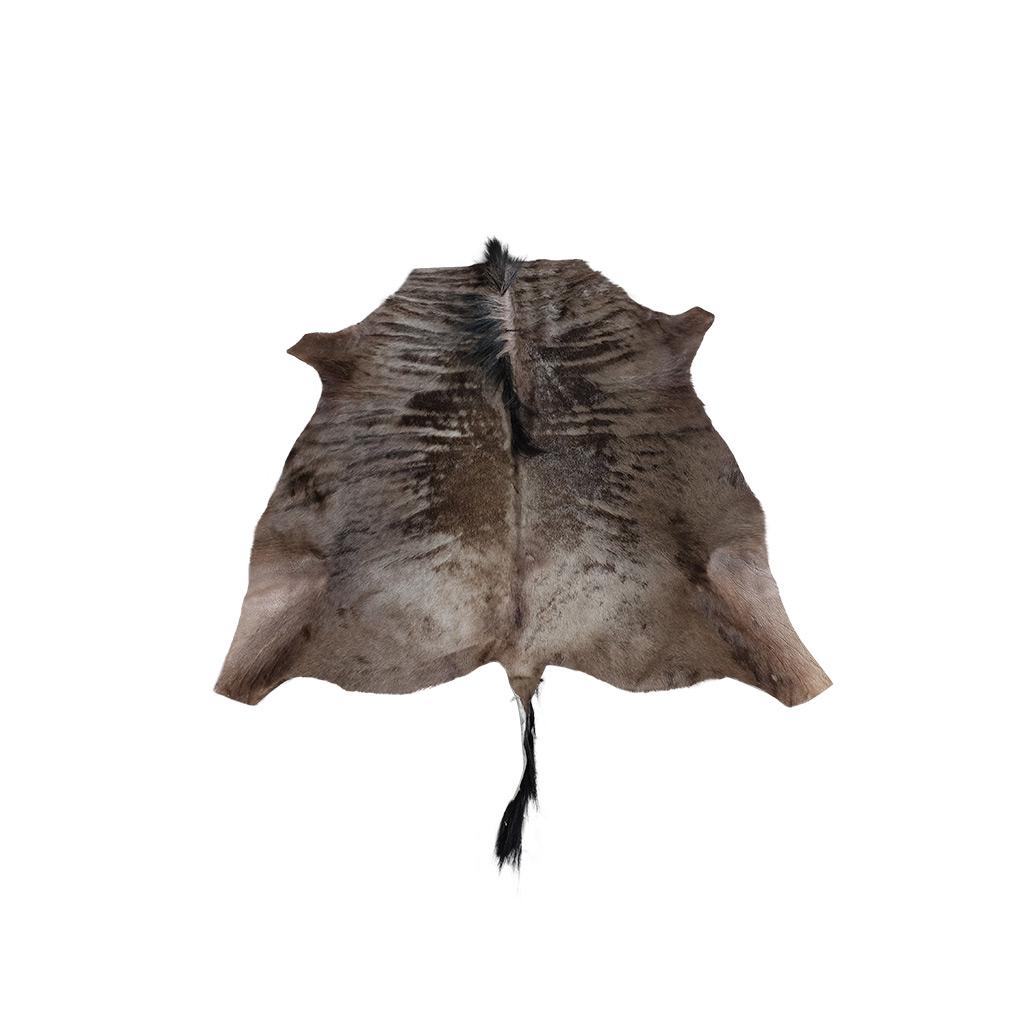 Gnoe huid wildebeest