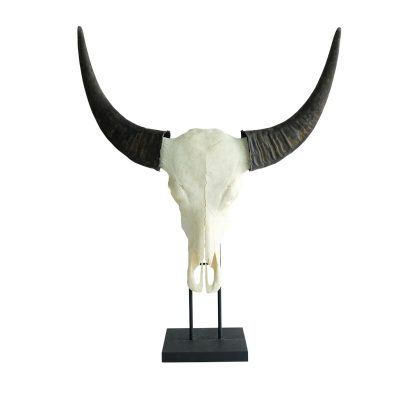 Skull op sokkel waterbuffel