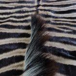 goedkope zebrahuid