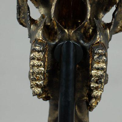 Skull brons