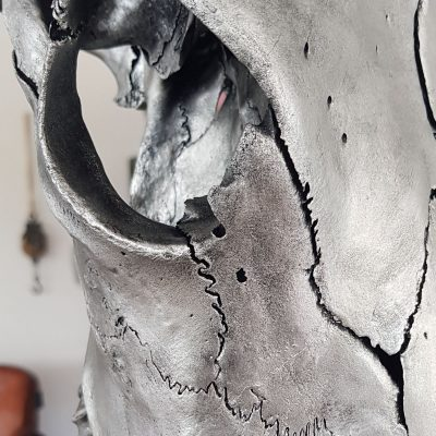 Zilveren skull